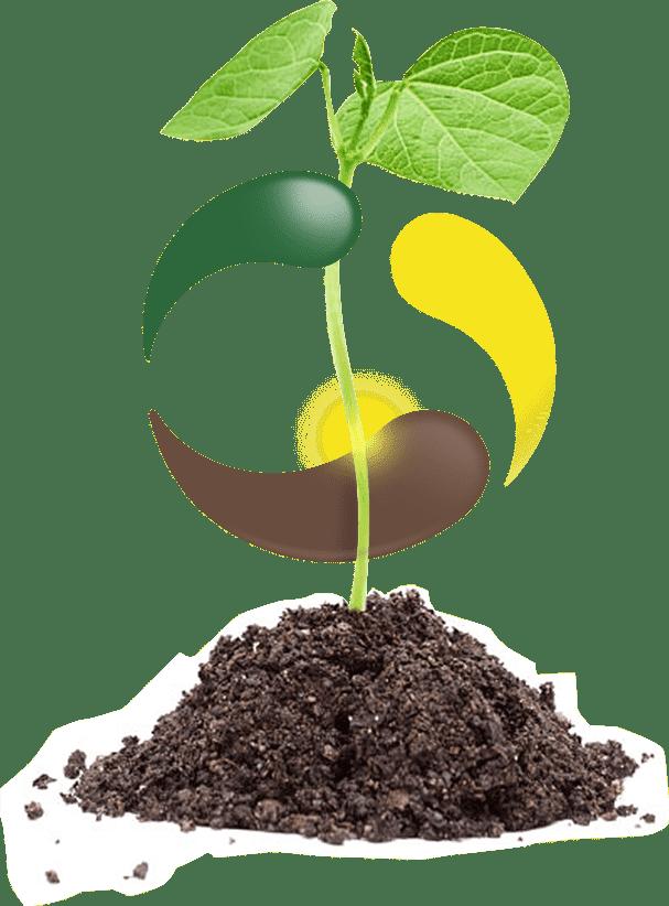Análises Agronômicas com agilidade